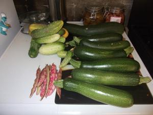 courgettes, beans and gherkins