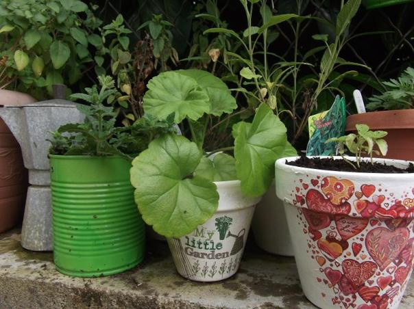 Decoupage on plant pots - Lady Justine's blog