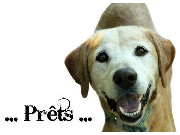 prets